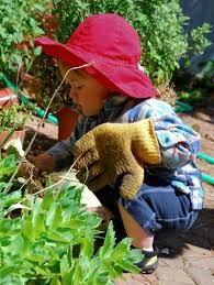 herb gardens for children gardening