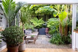 24 ideas for lawn free gardens houzz