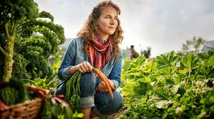 urban farming and is it profitable