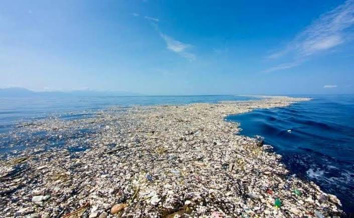 Image result for the plastic island in the pacific ocean images""