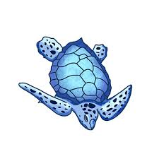 Cartoon Sea Turtles Car Stickers And Decals Funny Car Styling Bumper Sticker Windshield Window Vinyl Decal Decoration Car Stickers Aliexpress