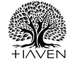 What People Are Saying About Haven — Haven
