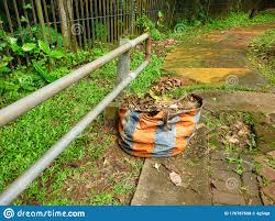 Leaf Litter In The Garbage Bin Near A Metal Fence In The Corner Of The Streets Stock Photo Image Of Benches Corner 176787698