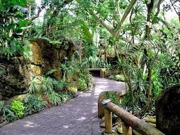 inside rainforest pyramid moody