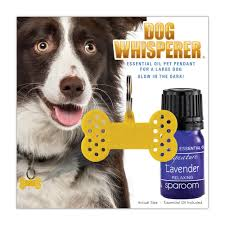 dog whisperer large collar pet diffuser