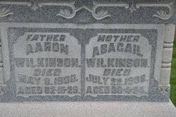 Abigail Snyder Wilkinson (1840-1908) - Find A Grave Memorial