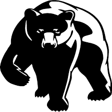 Bear Grizzly Cub Vinyl Decal Sticker