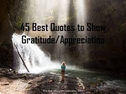 best quotes about gratitude appreciation