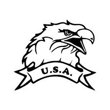 Usa Bald Eagle Vinyl Sticker