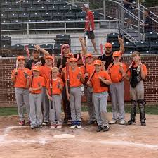 Crown Point Youth Baseball 12345006 > Site > Spring/Summer Baseball > 2020  > Results