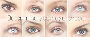 determine your eye shape and the best