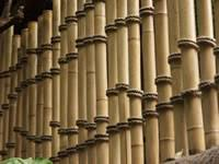 Bamboo Fencing For Garden Fence And Landscaping Privacy