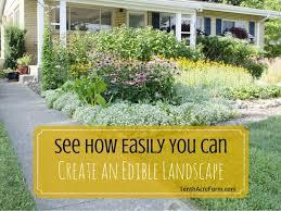 an edible landscape