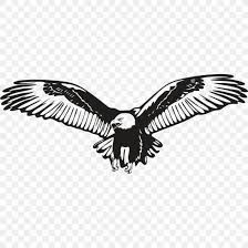 Bald Eagle Wall Decal Sticker Png 850x850px Bald Eagle Accipitridae Accipitriformes Art Beak Download Free