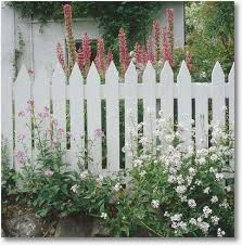 How To Build A Picket Fence The Fast And Easy Way