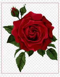 beautiful clipart red rose red rose