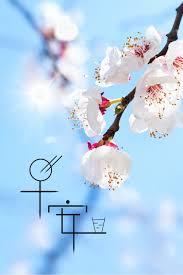 تحياتي صباح الخير فن دافئ أزهار الأدبية الزرقاء صورة الخلفية