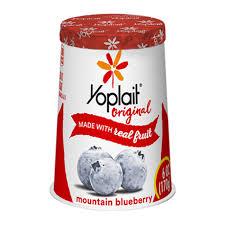 mounn blueberry yogurt with real