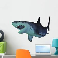 Amazon Com Megalodon Shark Wall Decal By Wallmonkeys Peel And Stick Graphic 24 In W X 18 In H Wm309708 Home Kitchen