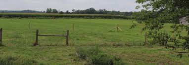 The Anatomy Of My Non Living Hybrid Fence A Contrarian S Guide To Grass And Guns