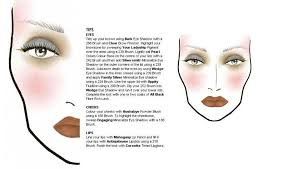 mac pro cosmetics manual training