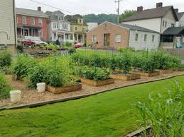 community vegetable gardens western