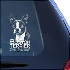 Amazon Com Boston Terrier Clear Vinyl Decal Sticker Portrait For Window Bull Terrier Dog Sign Art Print Automotive