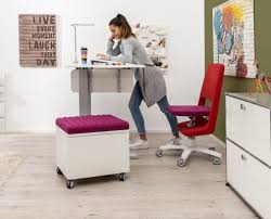 Stand Sit Workstation For The Children S Room And Youth Room