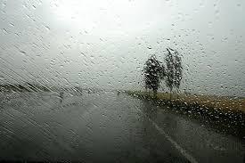Abbas Kiarostami: Rain photographs | That's How The Light Gets In