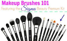 makeup brushes 101 featuring sigma