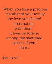 when you lose a precious member of your family the love you
