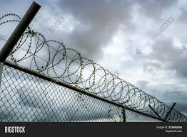 Prison Security Fence Image Photo Free Trial Bigstock