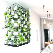 indoor wall garden podshots club