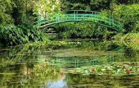 water lilies were grown