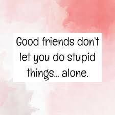 funny friendship quotes quotereel