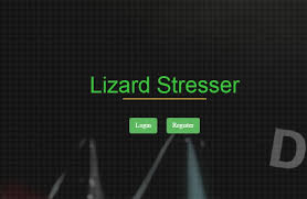 Lizard Squad Starts DDoS Business
