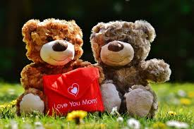 brown bear plush toys teddy