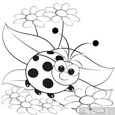 Poster Kleurplaat Lieveheersbeestje En Daisy Pixers We