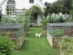 ble kitchen garden susanqua