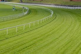 Horse Race Track Fence Photos Royalty Free Images Graphics Vectors Videos Adobe Stock