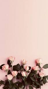 flowers background quotes iphone ideas for