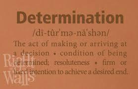 Determination Definition Fitness Wall Decals Vinyl Art Stickers