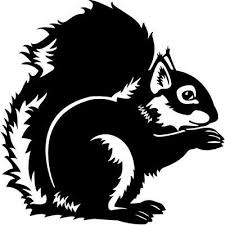Squirrel Animal Car Window Vinyl Decal Sticker Ebay