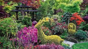 ideas plants and styles stuff co nz