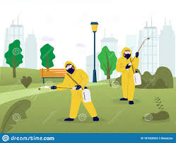Professional Pest Control Services, Vector Flat Illustration Stock Vector -  Illustration of banner, cleaning: 181020232