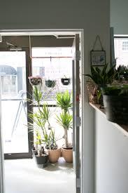 Going Indoor To Outdoor The Zen Succulent Durham S Neighborhood Plant Gift Shop