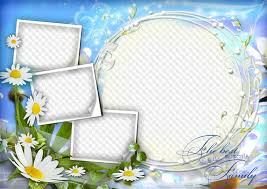 beautiful daisies free psd png frame