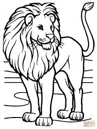 Mannetje Afrikaanse Leeuw Kleurplaat Gratis Kleurplaten Printen