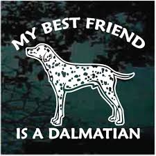 Dalmatian My Best Friend Car Window Decals Stickers Decal Junky