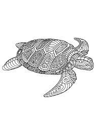 Animal Coloring Pages Pdf Kleurplaten Mandala Schildpad